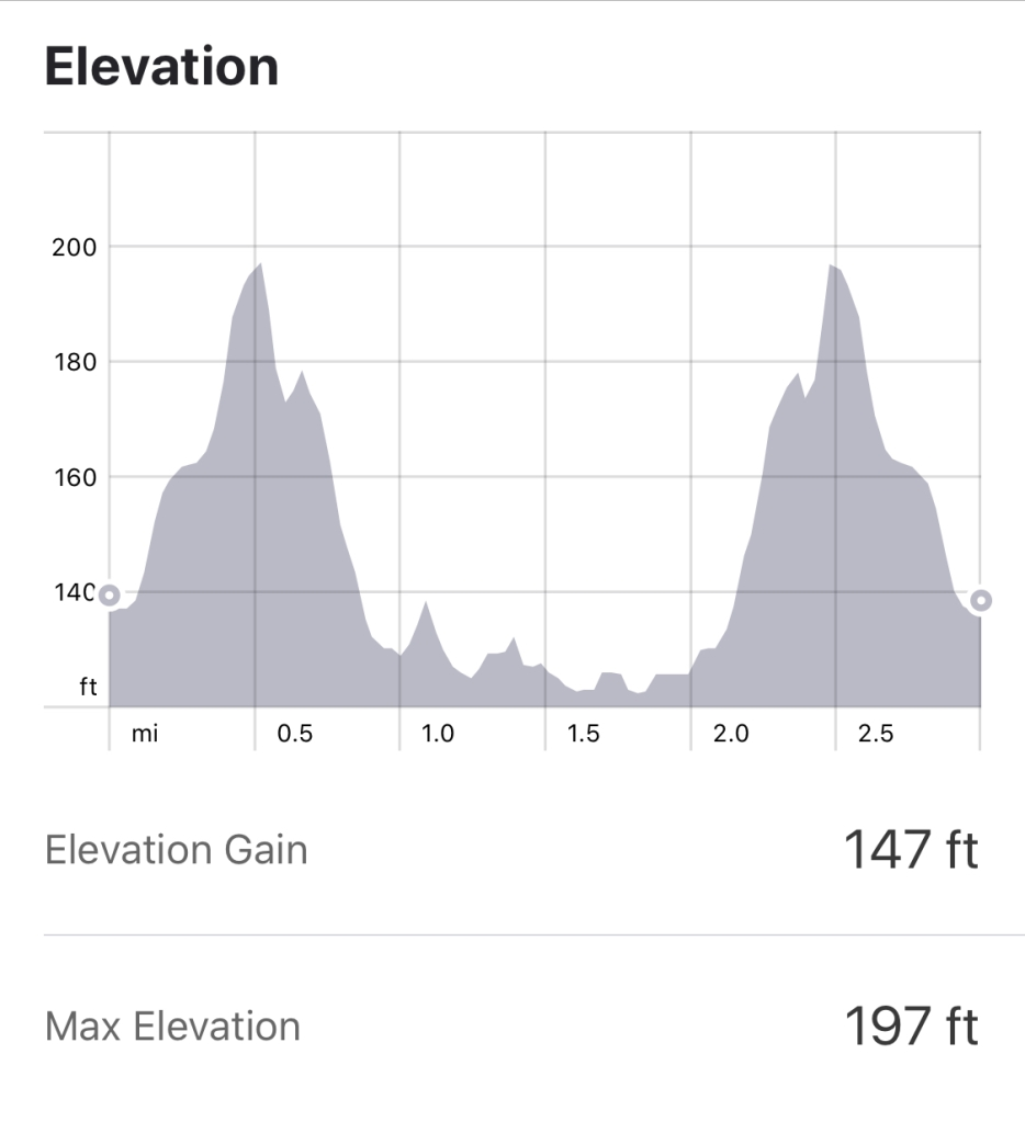 Wollaton Hall Parkrun Elevation Profile