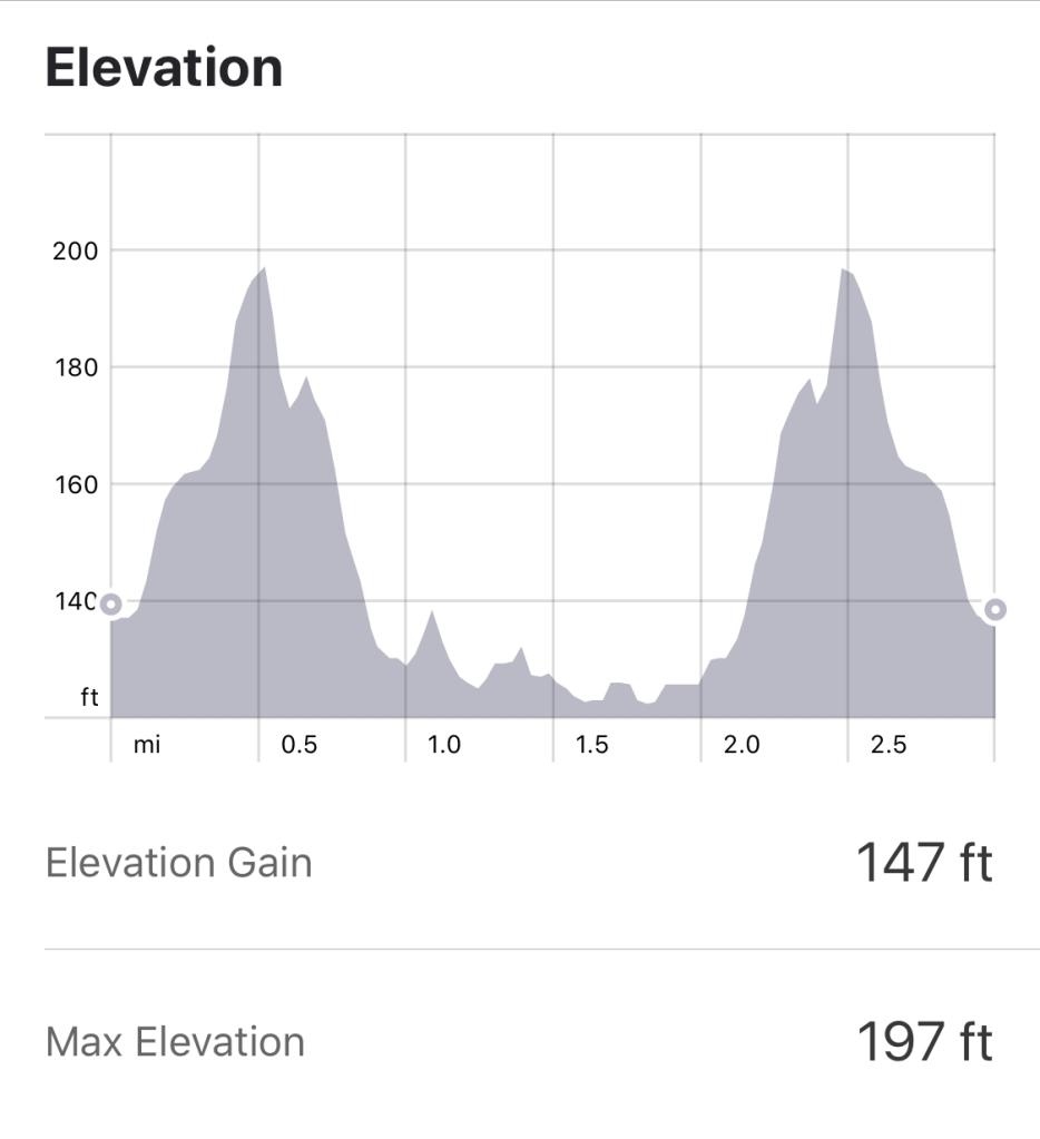 Wollaton Hall Parkrun Elevation Profile